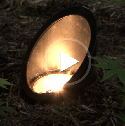 Lighting your garden with well lights