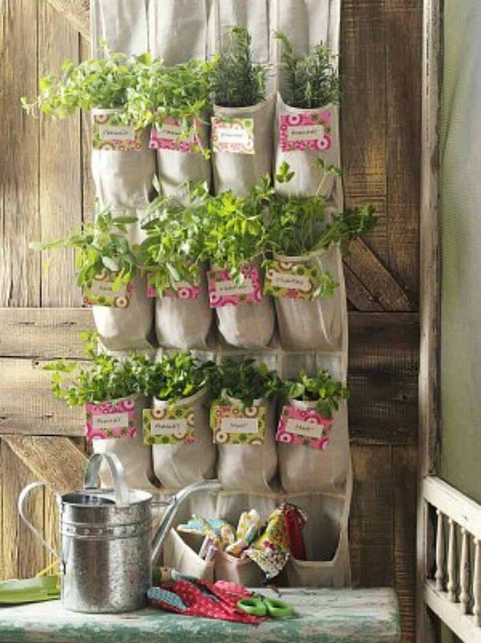 Hanging Shoe Storage Vertical Planter Diy Projects For