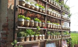 How To Build A Self Watering Vertical Garden