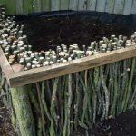 Natural Wood Raised Garden Samples