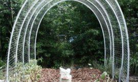 DIY Hoop House Trellis
