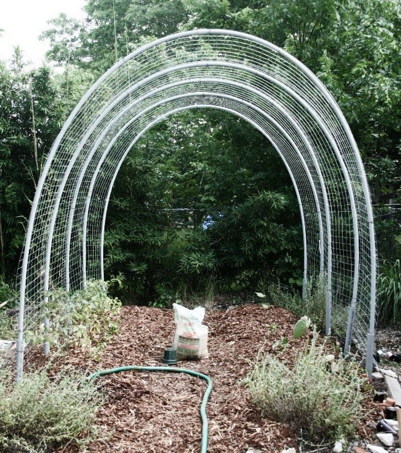 Diy Hoop House Trellis Diy Projects For Everyone