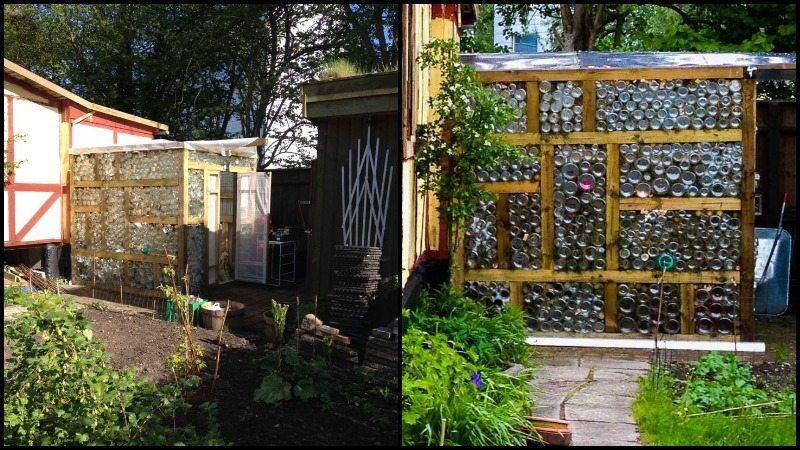 Glass Jar Greenhouse