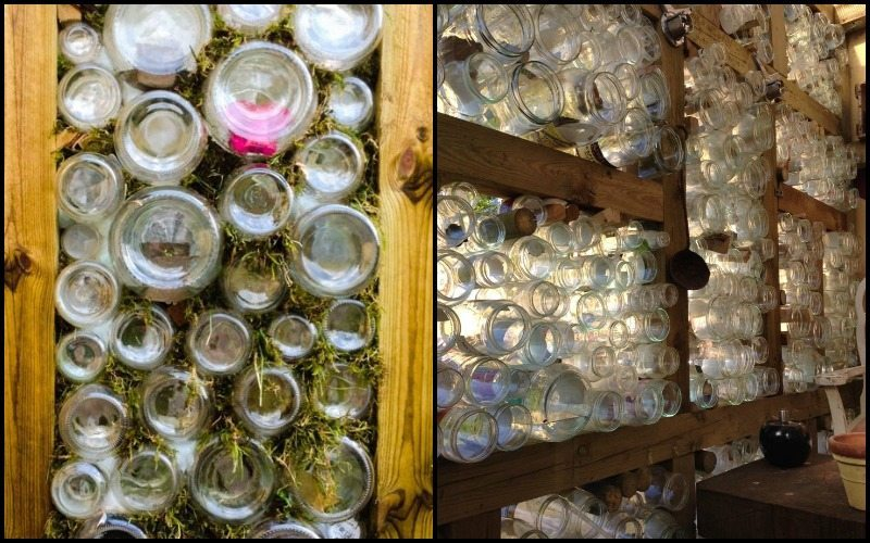 Glass Jar Greenhouse