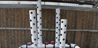 PVC Aquaponic System
