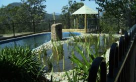 Build a natural swimming pond – Pt 3