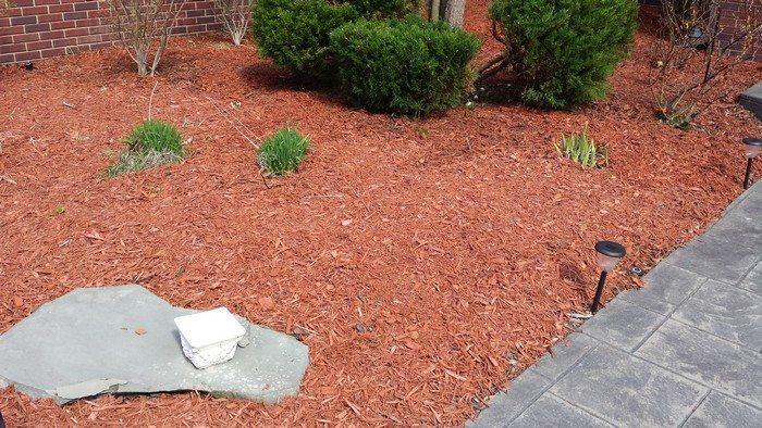 Easy Cedar Garden Bench