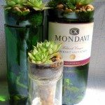 Succulent Wine BottlePlanter