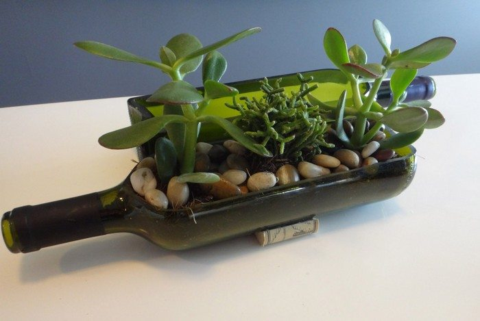 Succulent Wine BottlePlanter