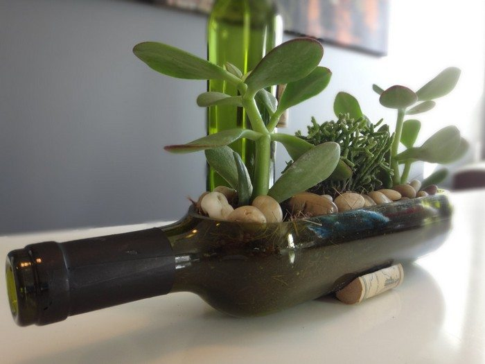 Turn Wine Bottles Into Gorgeous Succulent Planters DIY