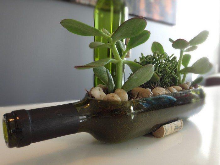 Turn Wine Bottles Into Gorgeous Succulent Planters Diy