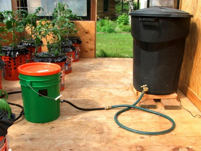 5 gallon self watering tomato container diy projects for everyone
