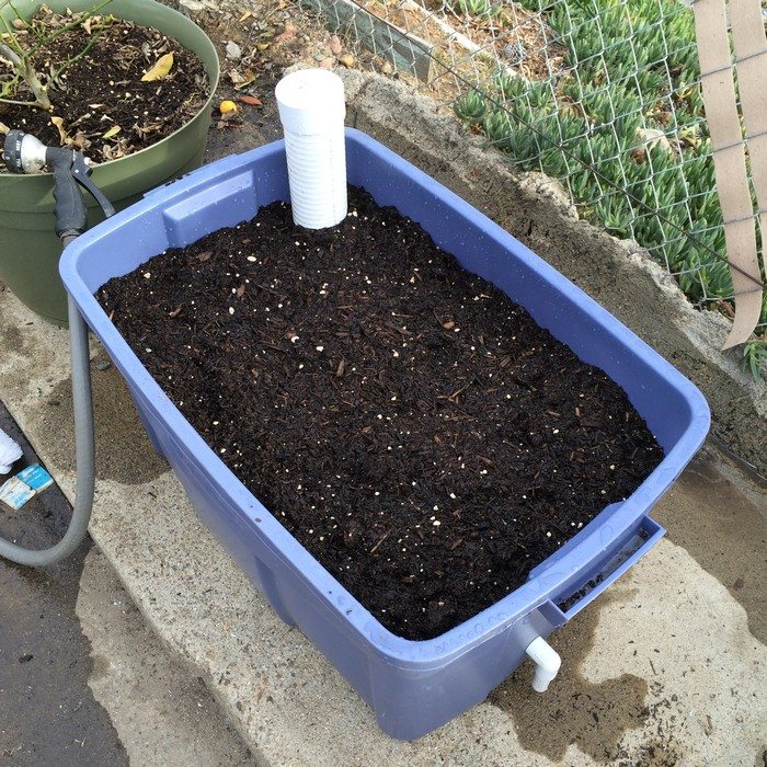 A wicking watering system promotes a strong, healthy root system.