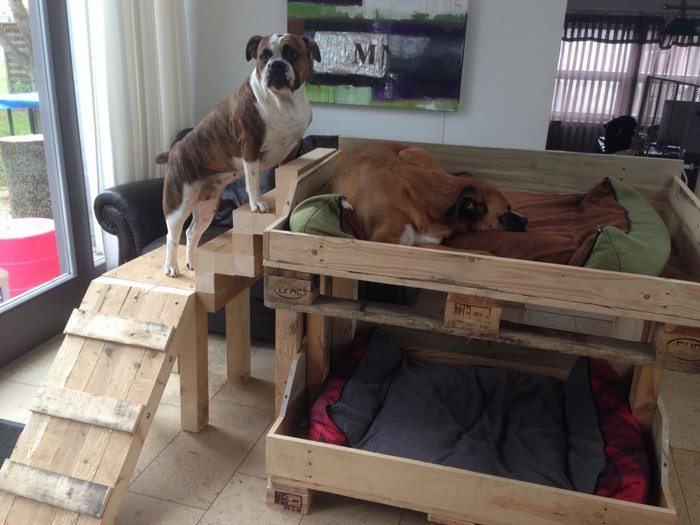 diy dog bunk bed with stairs 1