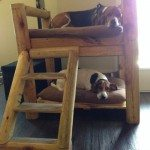 DIY Dog Bunk Bed