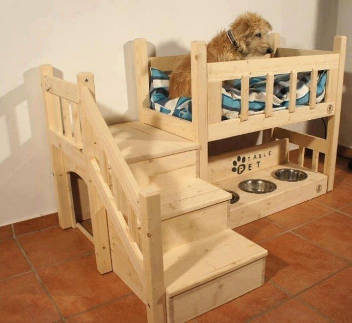how to build a bunk bed for your pets diy projects for. Black Bedroom Furniture Sets. Home Design Ideas