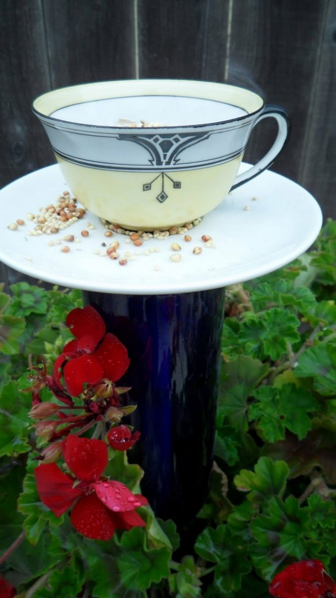 How to make a bird feeder from a teacup