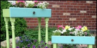 Drawer Planter Main Image