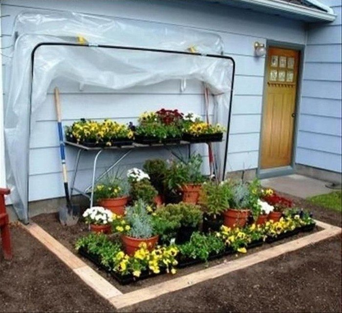 Fold-Down Greenhouse