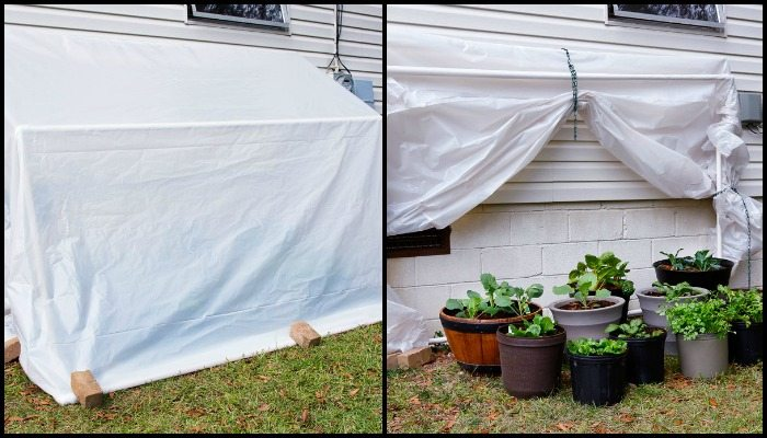 How to Build Your Own Fold-Down Greenhouse