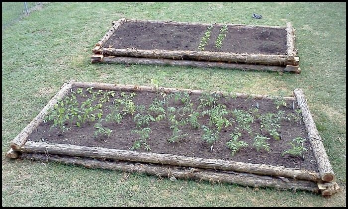 Advantages Of Raised Beds
