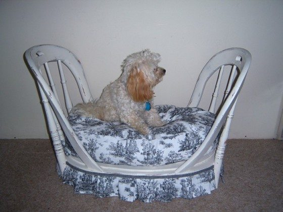 Repurposed Old Chair Dog Bed