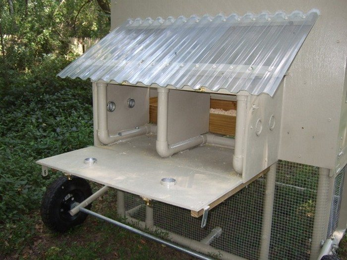 How To Build A Chicken Tractor Diy Projects For Everyone
