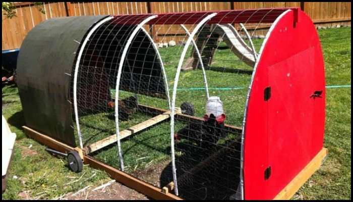 Chicken Tractor Main Image