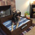step by step how to make a pallet dog bed
