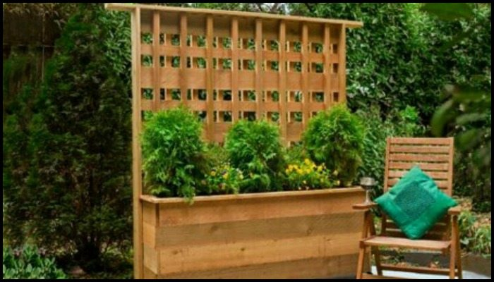 Planter with Privacy Screen Main Image