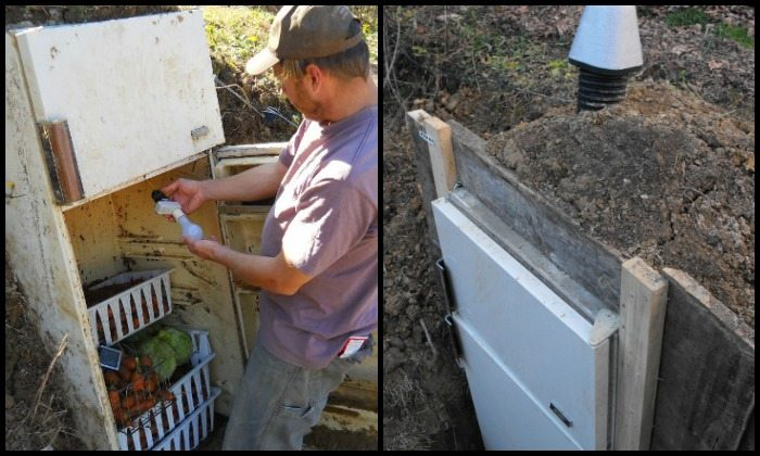 Convert an old refrigerator into a root cellar