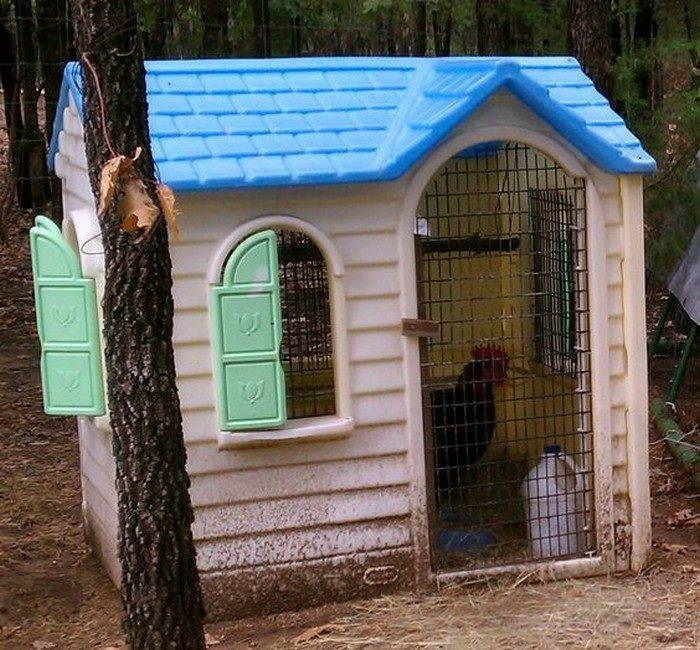 how to turn an outdoor stable into a chicken coop