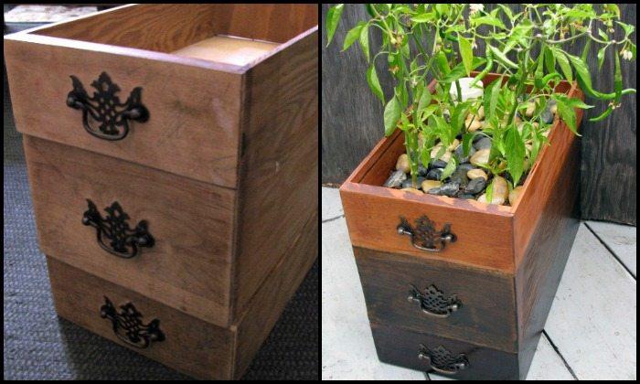 Self-watering dresser drawer planter