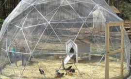 How to build a geodesic chicken tractor