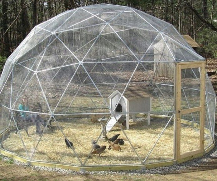 How To Build A Geodesic Chicken Tractor DIY Projects For