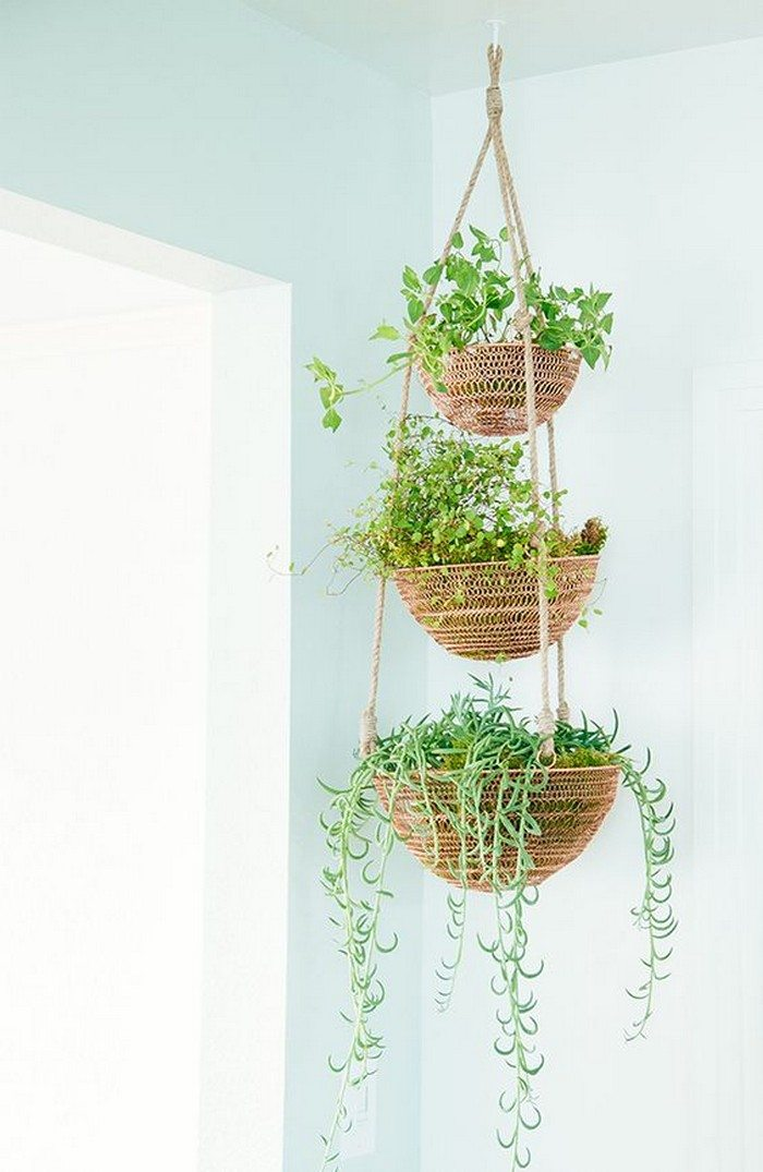 How to make a hanging basket planter