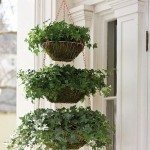 Hanging Basket Planter Album Images