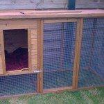 Outdoor Cat Run Enclosure 001