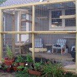 Outdoor Cat Run Enclosure