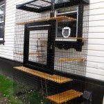Outdoor Cat Run Enclosure