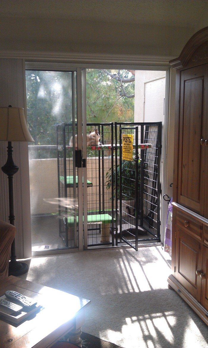 How To Build An Outdoor Cat Run Diy Projects For Everyone