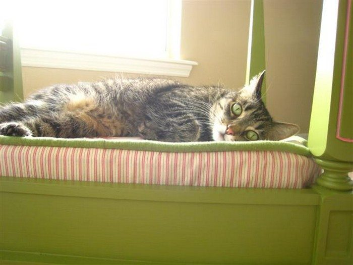 Side Table Pet Bed
