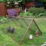Collapsible Chicken Tractor