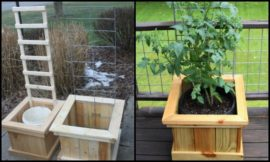 Build a garden grow box and trellis combo