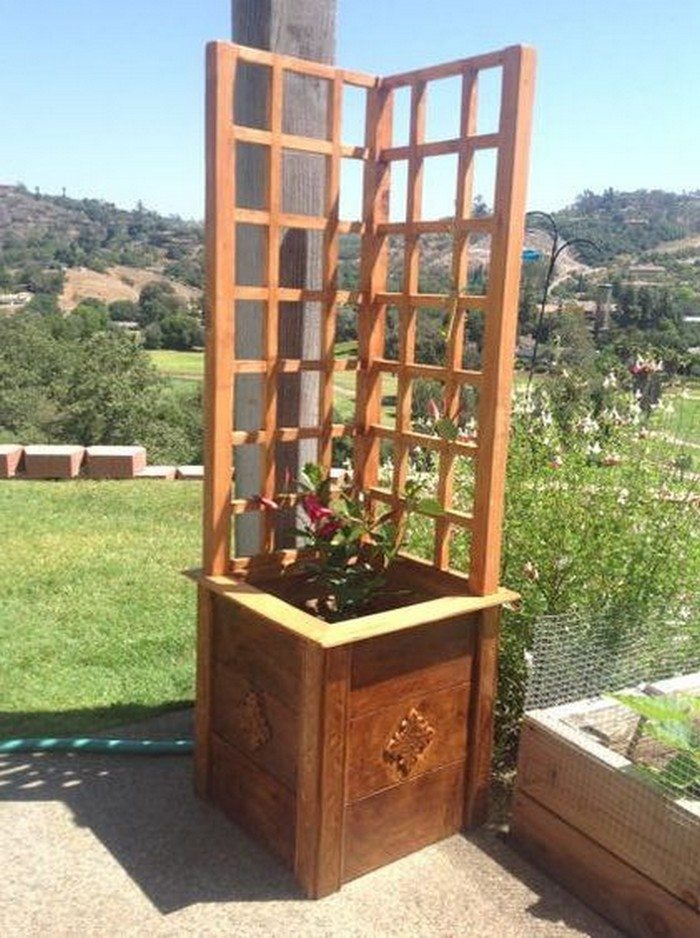 Garden Grow Box and Trellis Combo