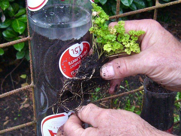 Recycled Soda Bottles Vertical Garden
