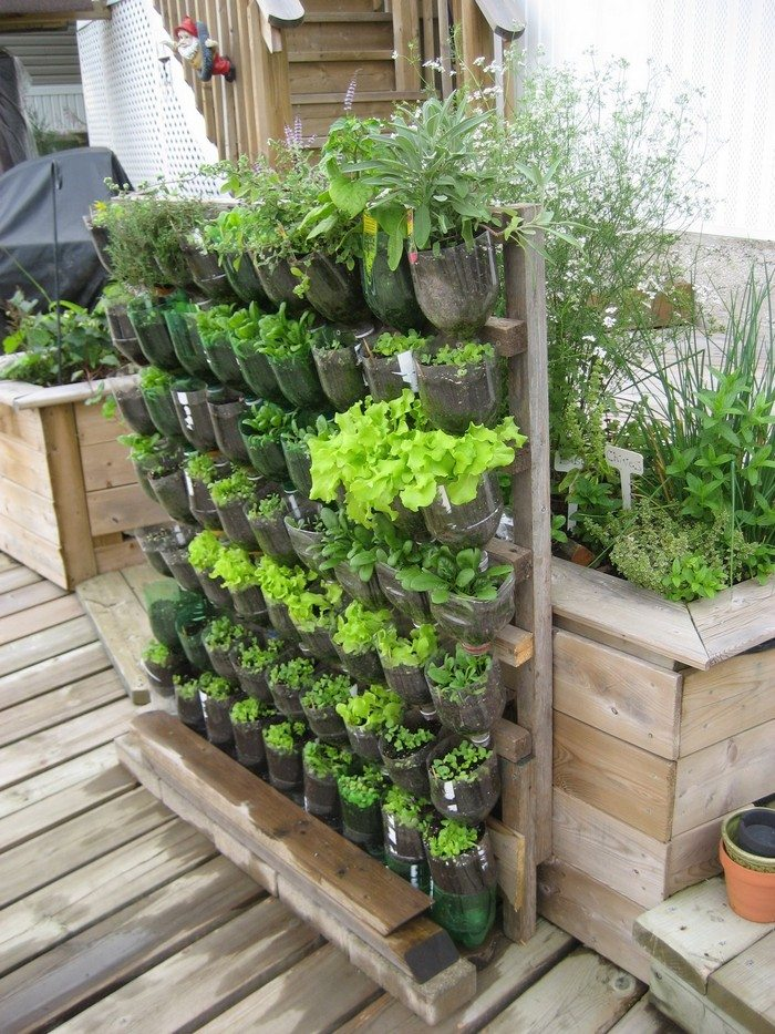 Build a vertical garden from recycled soda bottles diy for Garden made of waste material