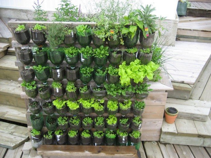 Garden Design Using Photos : Build a vertical garden from recycled soda bottles diy