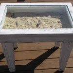 Seashell Coffee Table