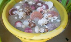 How to make a seashell coffee table